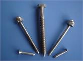 供应:不锈钢 紧固件