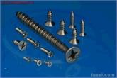 生产各类不锈钢自攻钉 GB846 不锈钢小螺丝