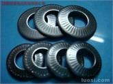 A2材质NFE25511法式垫圈