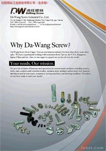 Customized Screws