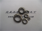 (SZJYD品牌)锥形外锯齿垫圈DIN6798V