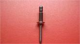 供應:304全不銹鋼拉絲鉚釘(內鎖)