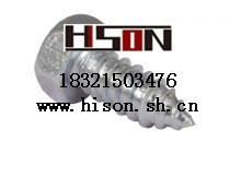 DIN 571六角头木螺钉hexagon head wood screws (coach screws)