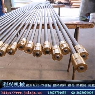 梯形丝杆,大型丝杆加工定制,专业生产丝杆
