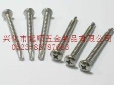 平价供应不锈钢SUS410 304 316盘头自攻自钻(钻尾钉)