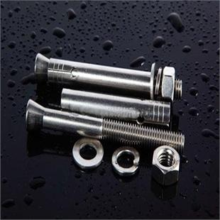 【专业生产】不锈钢膨胀螺丝  全江苏最低价供应不锈钢膨胀螺栓 定做非标膨胀