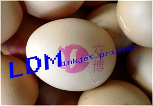 喷码机 鸡蛋喷码机