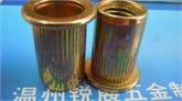 温州m6平头竖纹碳钢镀彩锌铆螺母