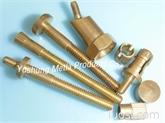 铜特殊螺丝