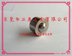 钢珠滚轮 压入型柱塞  BCHA24