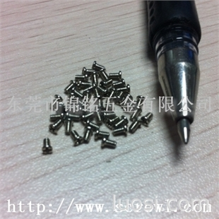 东莞最大的微型螺钉供应商,生产商
