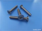 304不锈钢机螺钉ISO7991