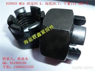 DIN935 M24 中碳发黑开槽螺母(主营六角螺母,法兰螺母,开槽螺母,尼龙锁紧,接头螺母,铆螺母