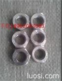 六角螺母 双相不锈钢 SS2205   欧标 1.4462  特材螺母   GB6170 螺母