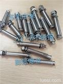 不锈钢膨胀螺栓 不锈钢壁虎