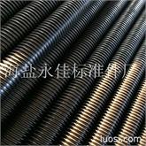 牙条 专业生产DIN975牙条螺杆丝杆M20*1米