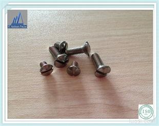 厂家现货低价供应 盘头割槽机械牙螺丝