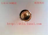 A4-80螺栓 316/316L螺丝  不锈钢内六角螺栓 不锈钢高强度螺丝