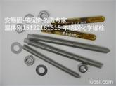 12*160化学锚栓 不锈钢化学锚栓 机械锚栓 车修壁虎