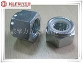 Nylon Lock Nut DIN982 (SS304)尼龙锁紧螺母外六角