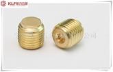 Copper DIN913 Set Screws with Flat Point铜螺丝