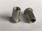 平头竖纹不锈钢铆螺母