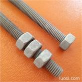 专业生产德制热镀锌螺杆牙条