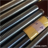 牙条 厂家供应标准60度螺纹螺杆