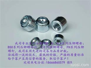 厂家直销---花齿涨铆螺母  冷镦涨铆螺母 Z-M3-1.0/1.2/1.5/2.0/2.5/3.0