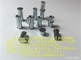 厂家直销---东莞  深圳 广州 冷镦盲孔压铆螺母柱