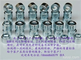 厂家直销---冷镦花齿涨铆螺母   天津  上海  深圳铆螺母  Z-M3/M4/M5/M6