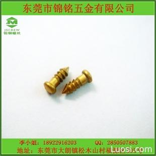 广东厂家直销非标定做非标螺丝防盗非标定制螺丝厂家