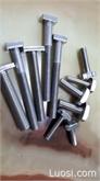 生产各种不锈钢T型螺栓