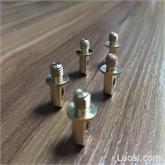 铜脚承重螺栓 LED专用