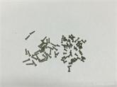 供应M1.2系列PB多种长度十字圆头平尾螺丝