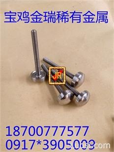 钽电极螺丝 钽电极螺钉 流量计电极