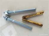 专业生产化学锚栓,车修壁虎,拉爆,内爆,电梯螺丝
