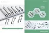 304,316不锈钢膨胀螺丝,不锈钢膨胀螺栓,不锈钢拉爆螺丝,新通用膨胀螺丝价格表