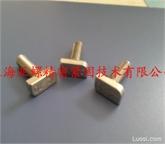 SUS309不锈钢T型螺栓