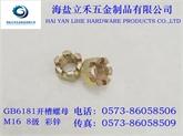 立禾/DIN935/937GB6178/GB6181六角开槽螺母/法兰开槽螺母(M16)