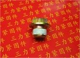 外六角带介喉塞 JB /ZQ 4450-1997
