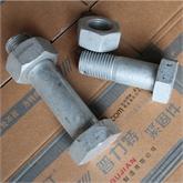 4.8级热镀锌带孔螺栓 电力螺栓