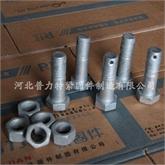 4.8级热镀锌带孔螺栓   六角螺栓