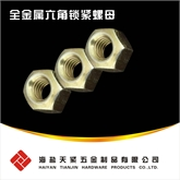 天紧现货DIN6925全金属锁紧螺母 全金属六角锁紧螺母 六角压点锁紧螺母