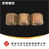 QC363加厚六角螺母 六角螺母 厚型螺母
