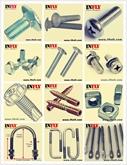 马车螺栓DIN603美制马车螺丝厂A307A半圆头方颈螺栓标准马车螺栓价格 - 英菲五金厂