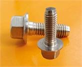 专业生产高强度标准紧固件8.8级外六角法兰面螺栓螺丝-加大系列-B级 GB5789
