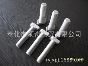 浙江宁波厂家直销T型螺栓3823型螺栓,高强度热浸锌表面M16-60