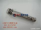 SUS304六角头膨胀螺栓