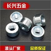 滚花涨铆螺母规格型号|圆涨铆螺母定做|不锈钢涨铆螺母现货供应
